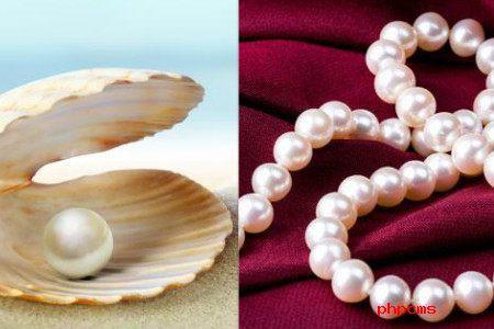珍珠收藏保养方法